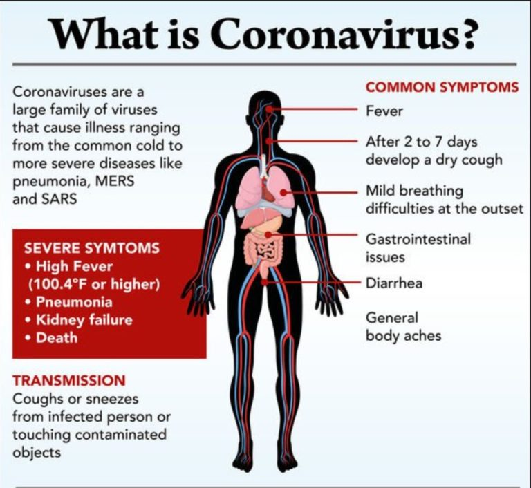 DISCOVER HOW CORONAVIRUS IS AFFECTING THE ONLINE ESL INDUSTRY - Includes a FREE Manycam resource pack 2